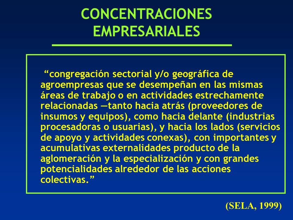 CONCENTRACIONES EMPRESARIALES