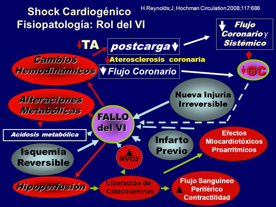 Shock Cardiogénico Fisiopatología: Rol del VI