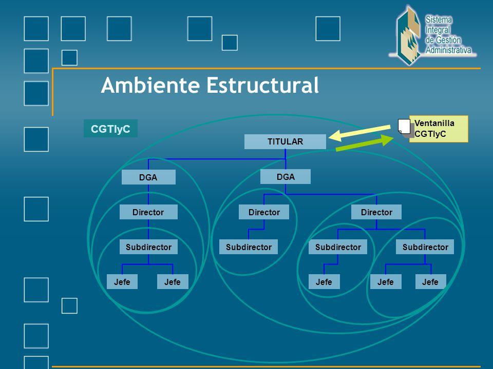 Ambiente Estructural CGTIyC Ventanilla CGTIyC TITULAR DGA DGA Director