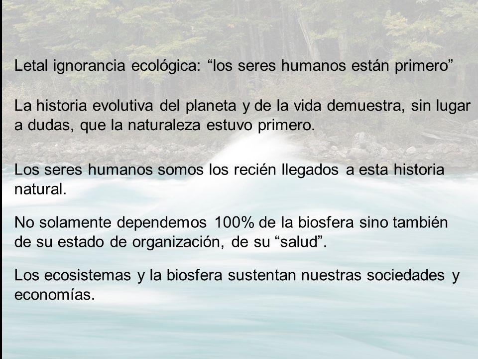 Letal ignorancia ecológica: los seres humanos están primero