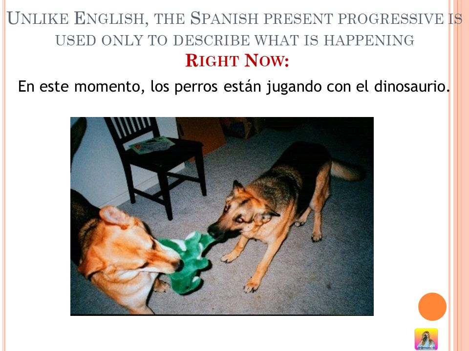 En este momento, los perros están jugando con el dinosaurio.