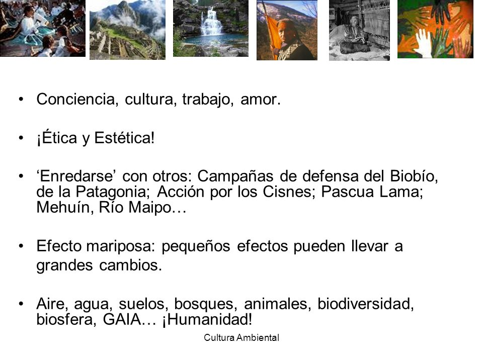Conciencia, cultura, trabajo, amor. ¡Ética y Estética!