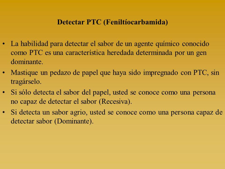 Detectar PTC (Feniltíocarbamida)