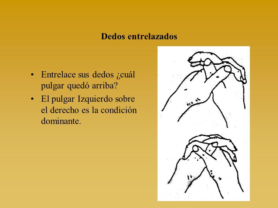 Dedos entrelazados Entrelace sus dedos ¿cuál pulgar quedó arriba.