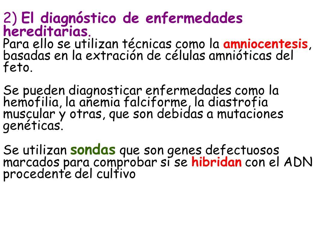 2) El diagnóstico de enfermedades hereditarias.