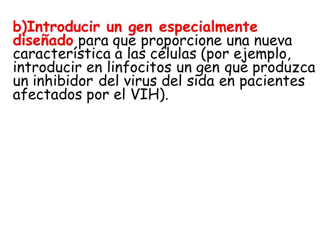 b)Introducir un gen especialmente diseñado para que proporcione una nueva característica a las células (por ejemplo, introducir en linfocitos un gen que produzca un inhibidor del virus del sida en pacientes afectados por el VIH).