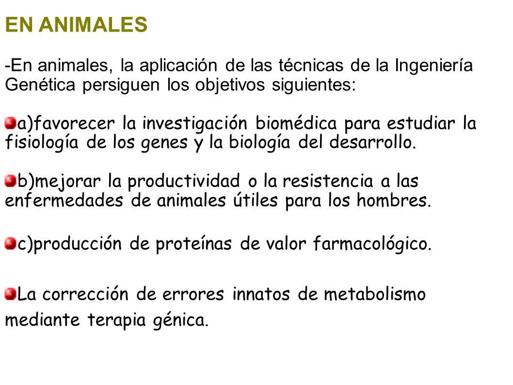 EN ANIMALES -En animales, la aplicación de las técnicas de la Ingeniería Genética persiguen los objetivos siguientes: