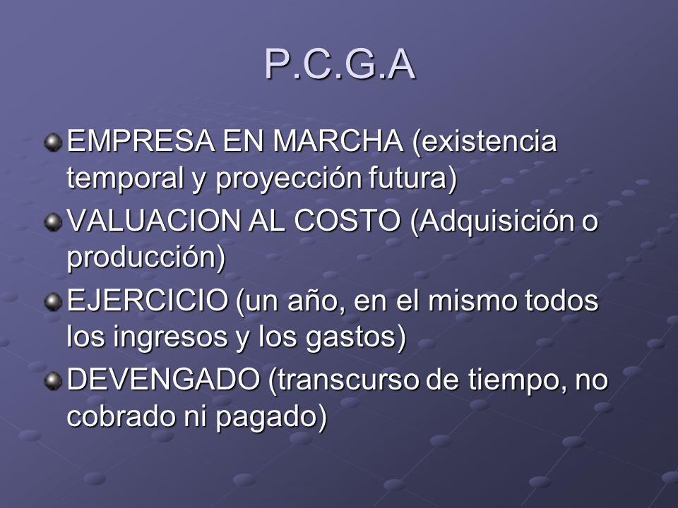 P.C.G.A EMPRESA EN MARCHA (existencia temporal y proyección futura)