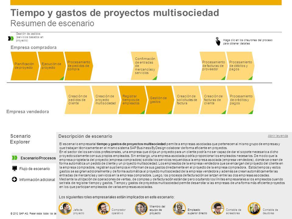 Tiempo y gastos de proyectos multisociedad Resumen de escenario