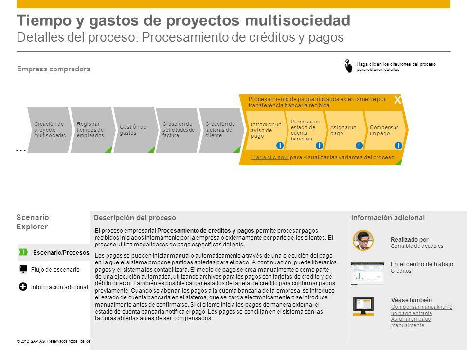 Tiempo y gastos de proyectos multisociedad Detalles del proceso: Procesamiento de créditos y pagos
