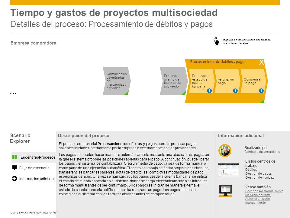 Tiempo y gastos de proyectos multisociedad Detalles del proceso: Procesamiento de débitos y pagos