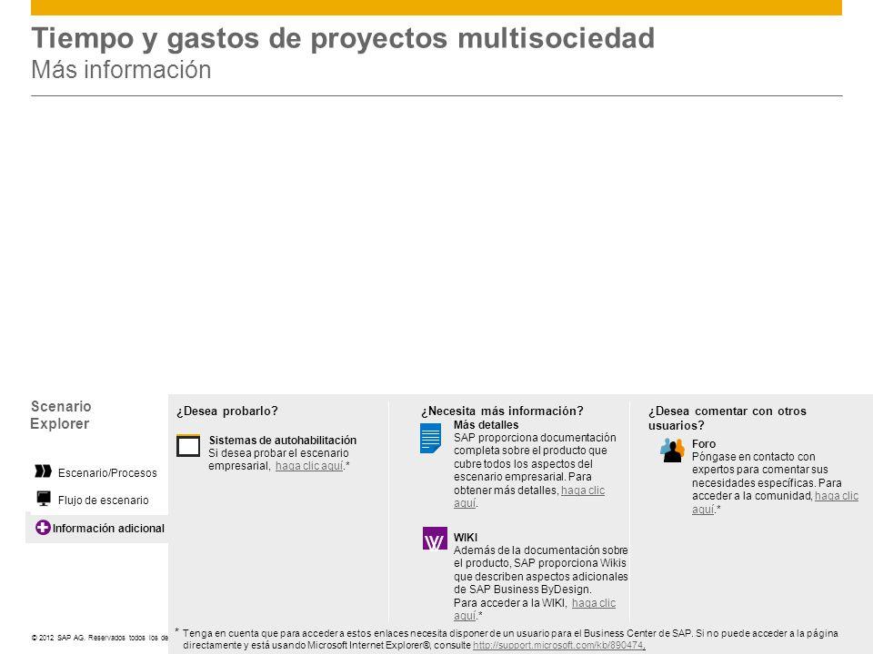 Tiempo y gastos de proyectos multisociedad Más información
