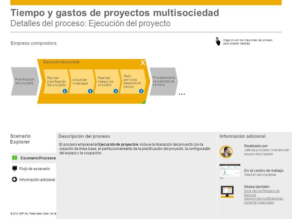 Tiempo y gastos de proyectos multisociedad Detalles del proceso: Ejecución del proyecto