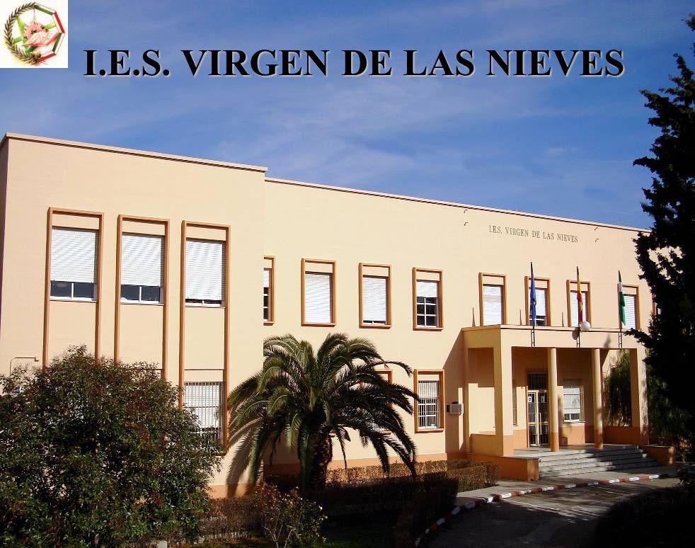 IES VIRGEN DE LAS NIEVES