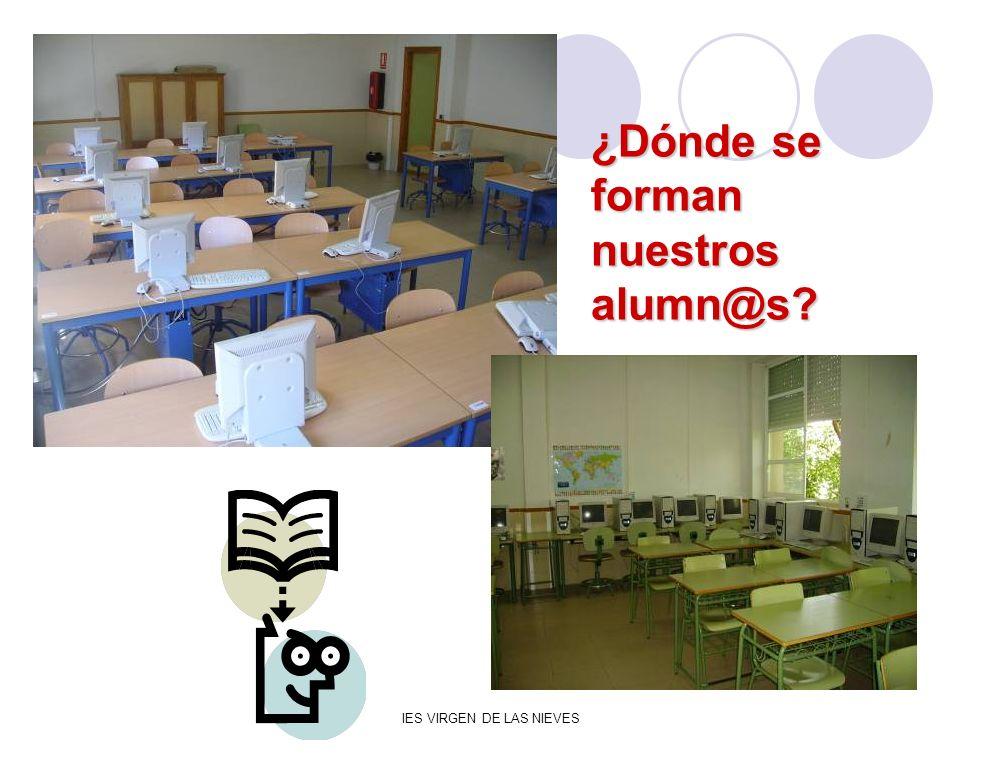 ¿Dónde se forman nuestros alumn@s