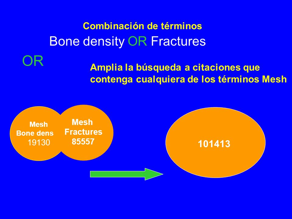 OR Bone density OR Fractures Combinación de términos