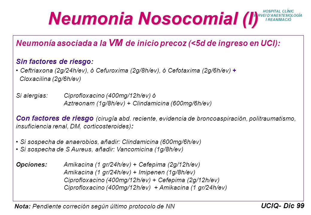 Neumonia Nosocomial (I)