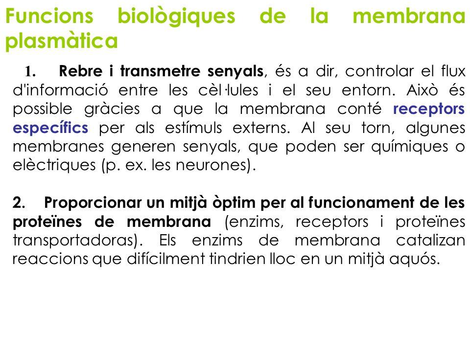 Funcions biològiques de la membrana plasmàtica