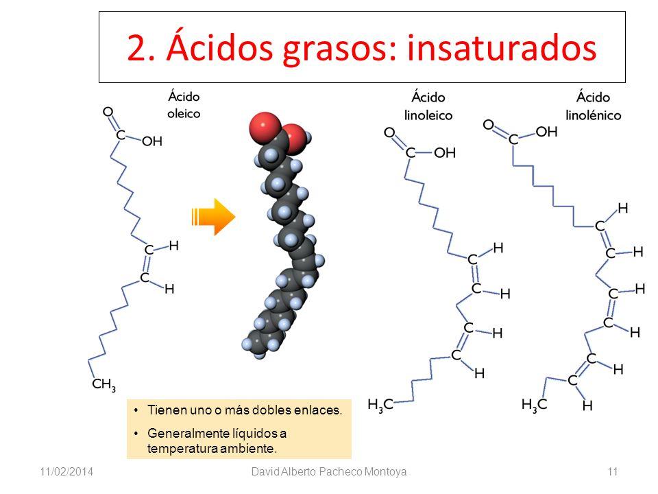 2. Ácidos grasos: insaturados