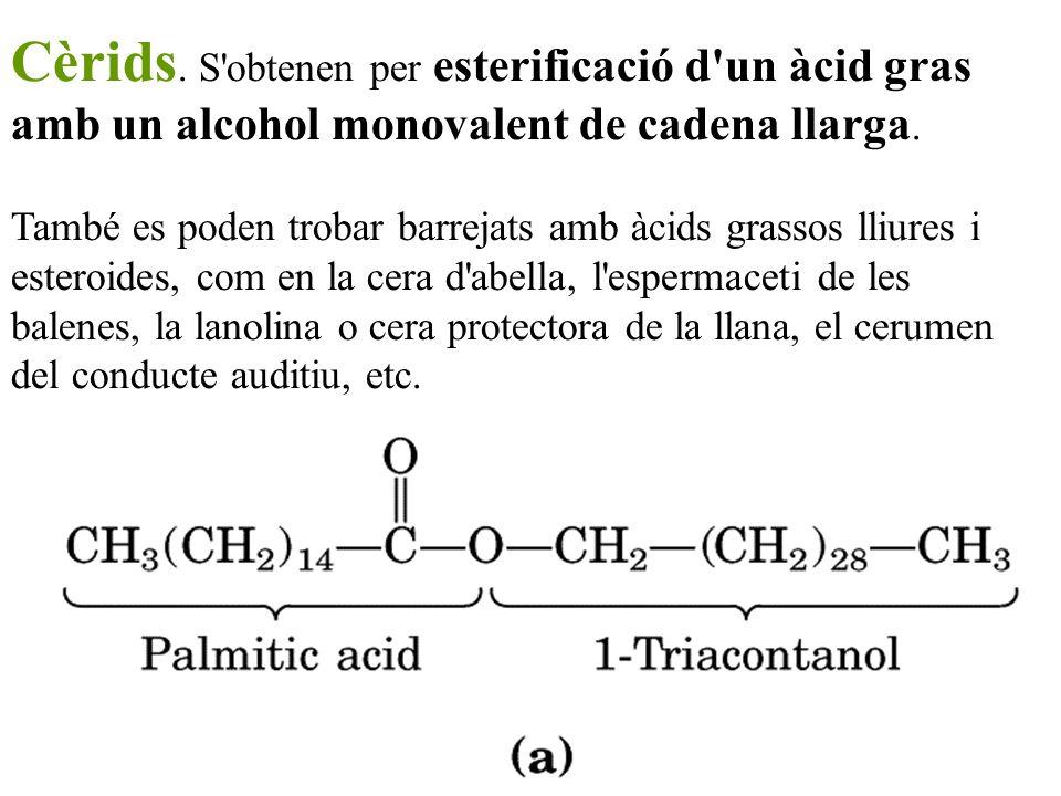 Cèrids. S obtenen per esterificació d un àcid gras amb un alcohol monovalent de cadena llarga.