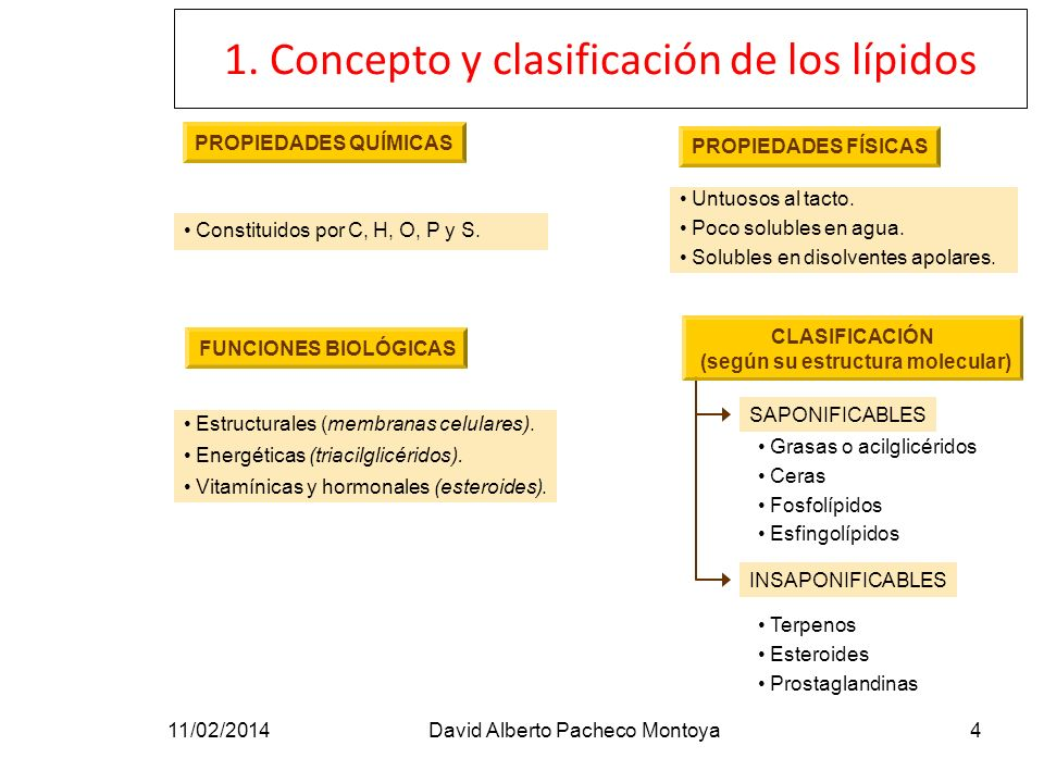 CLASIFICACIÓN (según su estructura molecular)