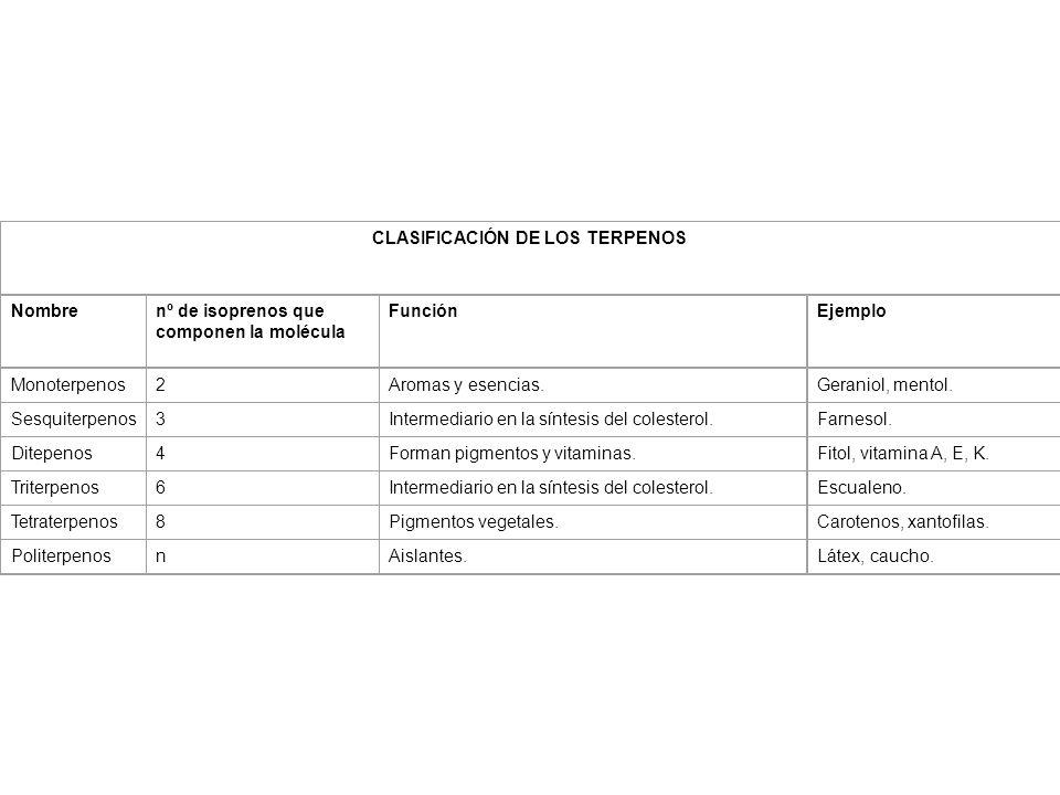 CLASIFICACIÓN DE LOS TERPENOS