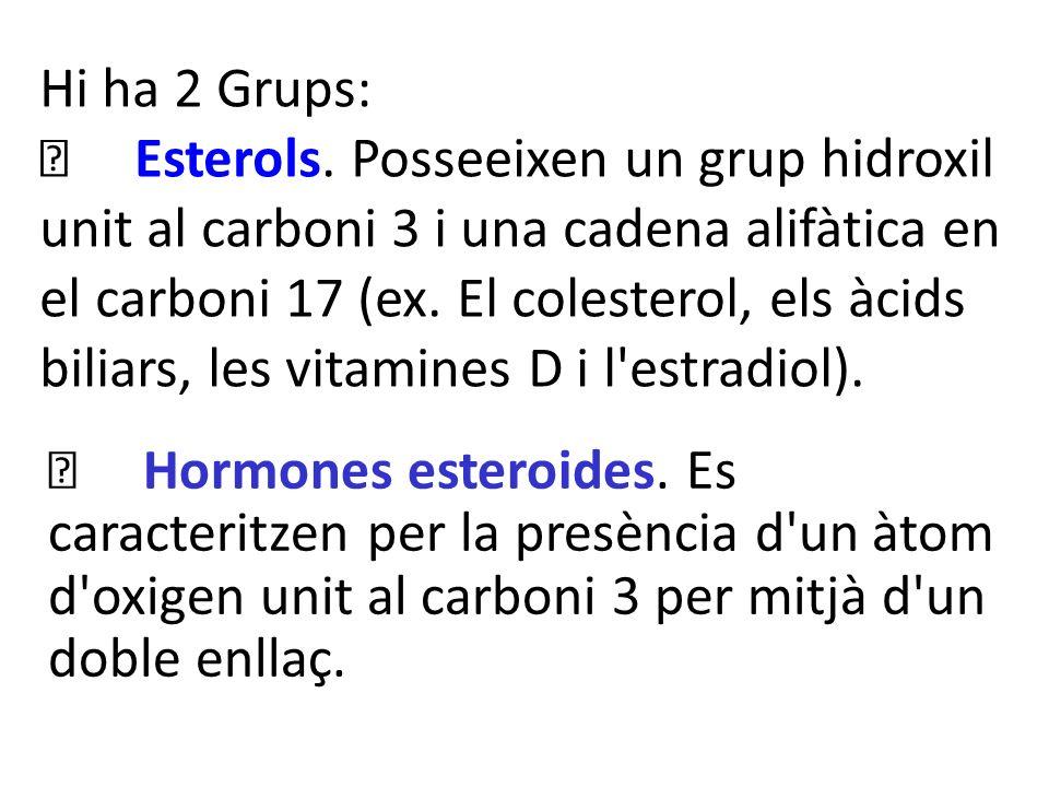 Hi ha 2 Grups: