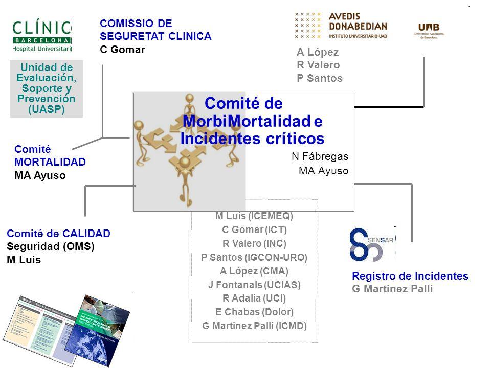 Comité de MorbiMortalidad e Incidentes críticos