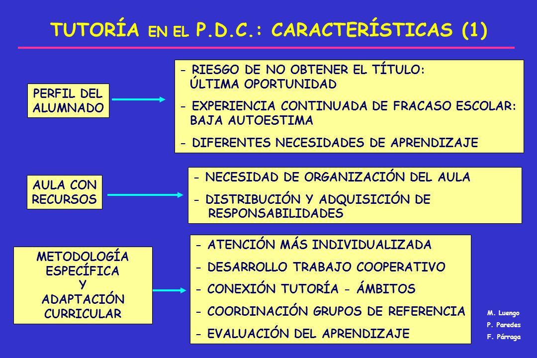 TUTORÍA EN EL P.D.C.: CARACTERÍSTICAS (1)