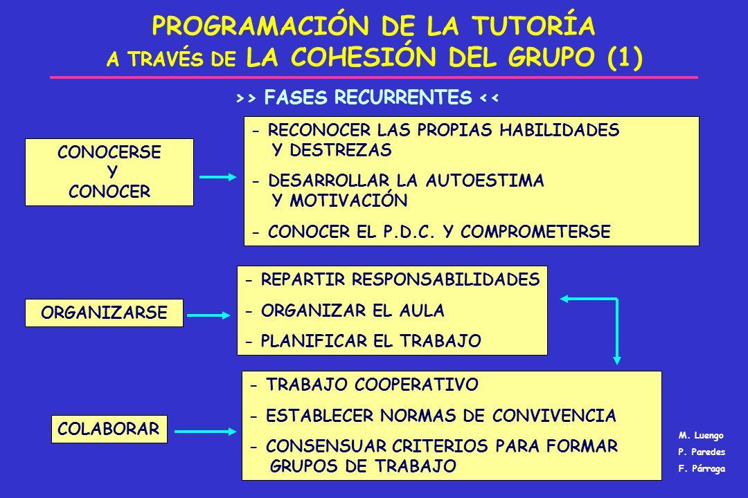 PROGRAMACIÓN DE LA TUTORÍA A TRAVÉS DE LA COHESIÓN DEL GRUPO (1)