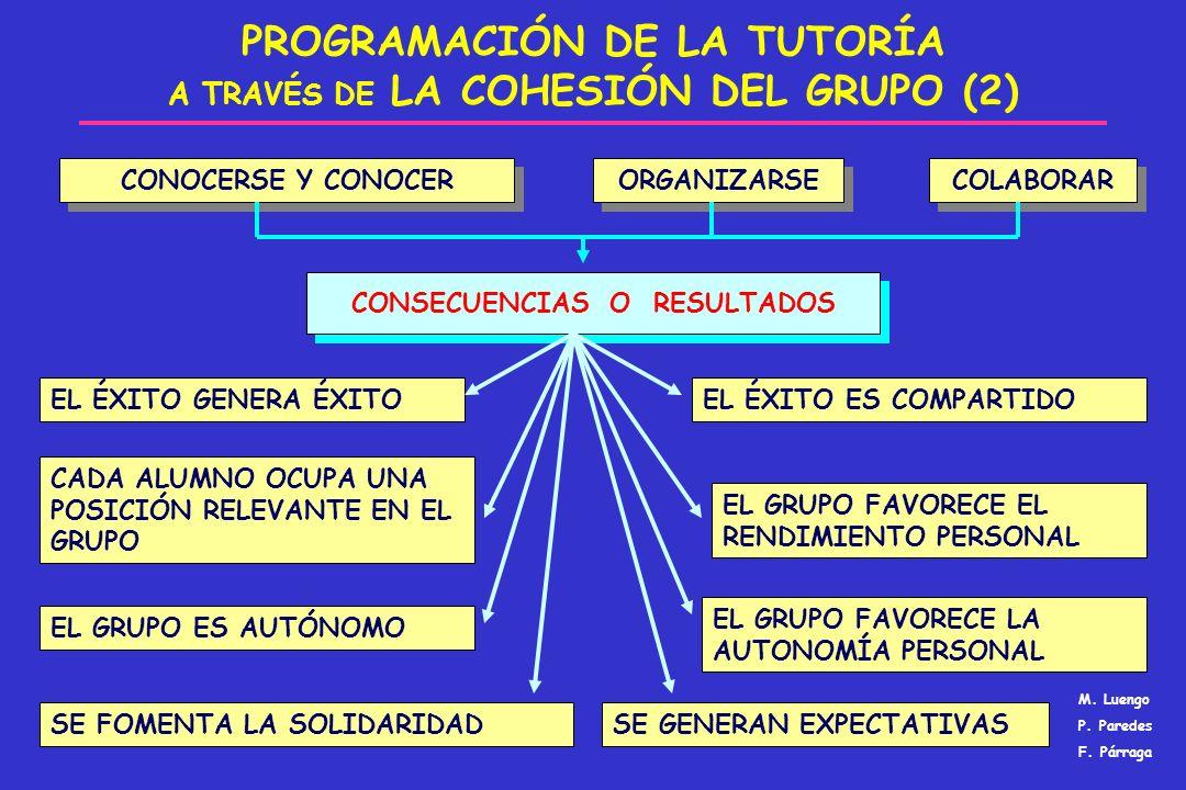 PROGRAMACIÓN DE LA TUTORÍA A TRAVÉS DE LA COHESIÓN DEL GRUPO (2)