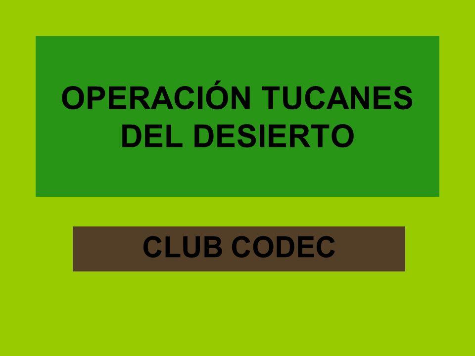 OPERACIÓN TUCANES DEL DESIERTO