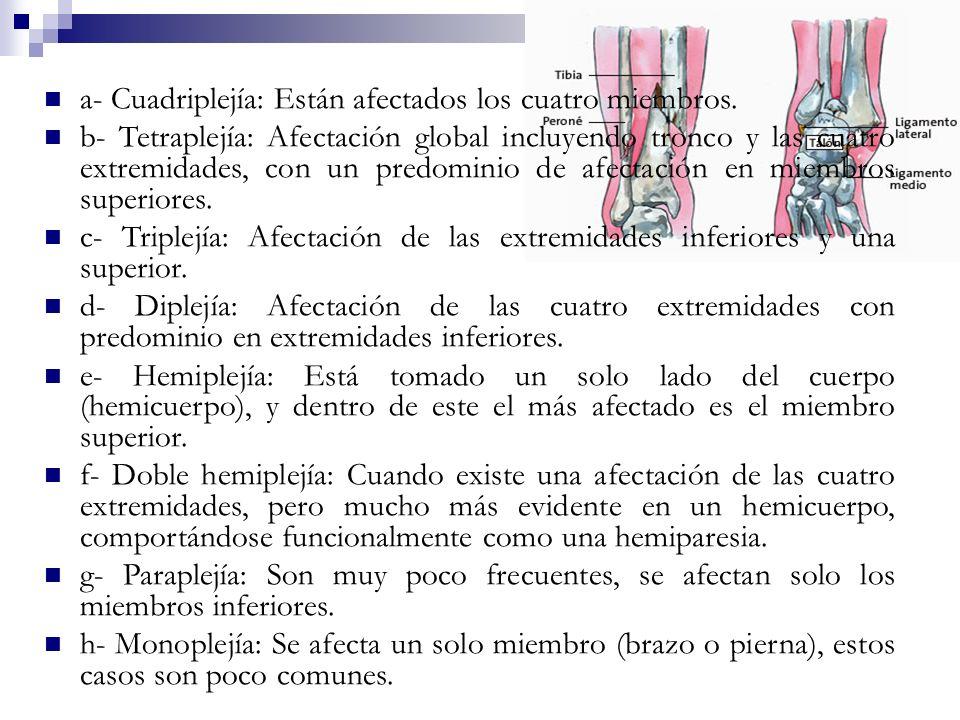 a- Cuadriplejía: Están afectados los cuatro miembros.