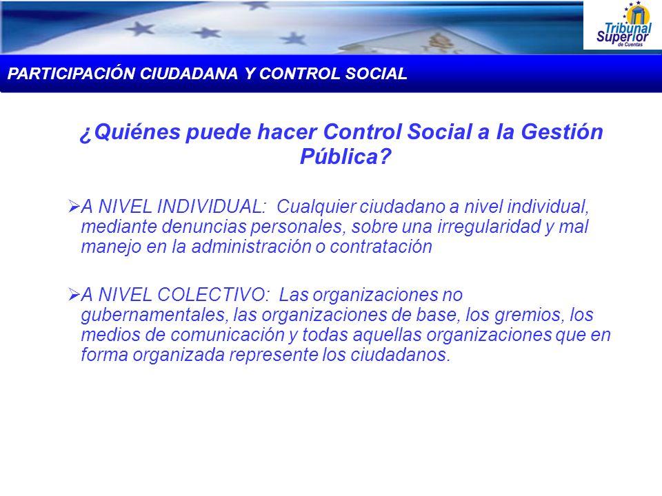 ¿Quiénes puede hacer Control Social a la Gestión Pública