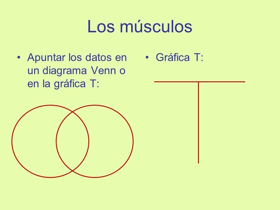 Los músculos Apuntar los datos en un diagrama Venn o en la gráfica T: