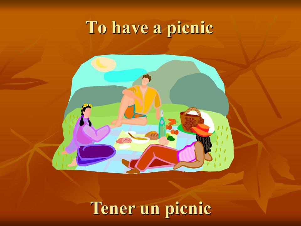 To have a picnic Tener un picnic