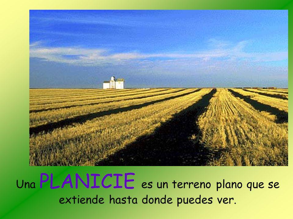 Una PLANICIE es un terreno plano que se extiende hasta donde puedes ver.