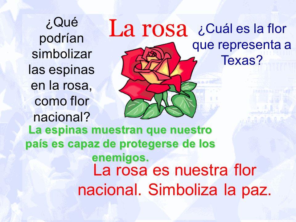 La rosa La rosa es nuestra flor nacional. Simboliza la paz.