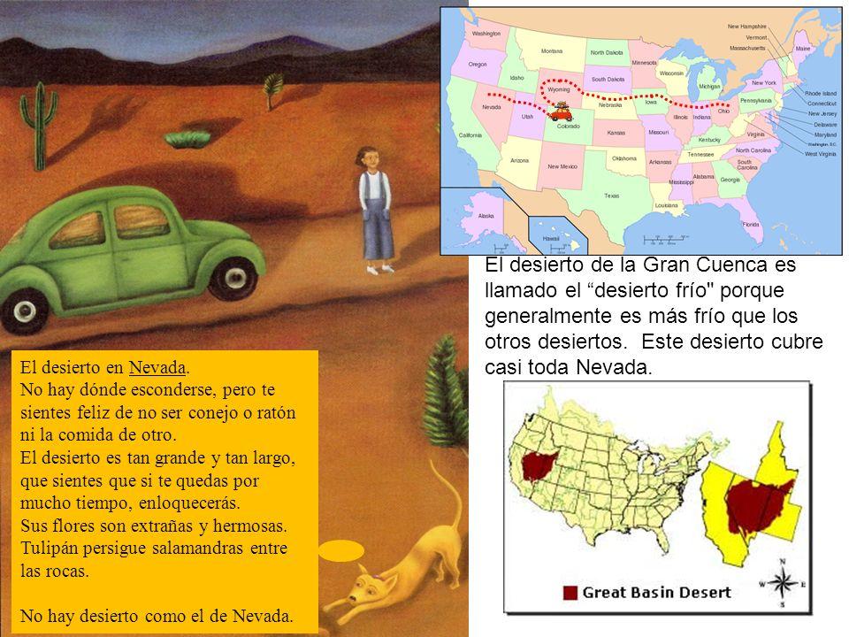 El desierto de la Gran Cuenca es llamado el desierto frío porque generalmente es más frío que los otros desiertos. Este desierto cubre casi toda Nevada.