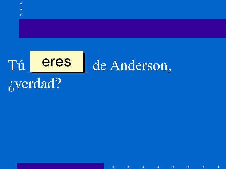 eres Tú ________ de Anderson, ¿verdad