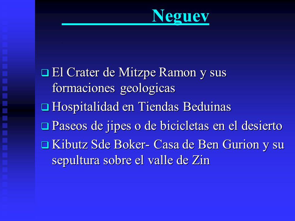 Neguev . El Crater de Mitzpe Ramon y sus formaciones geologicas