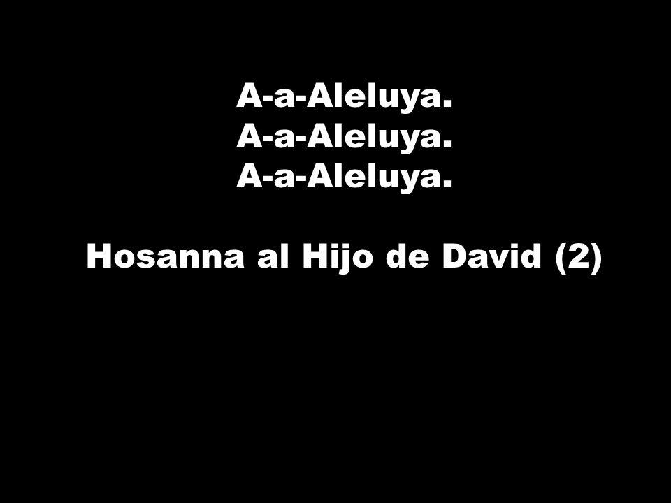 Hosanna al Hijo de David (2)