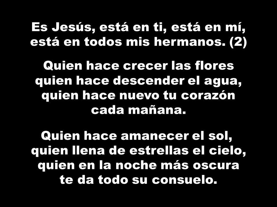 Es Jesús, está en ti, está en mí, está en todos mis hermanos. (2)