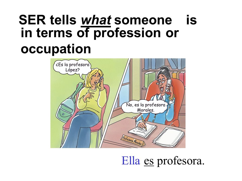 in terms of profession or occupation