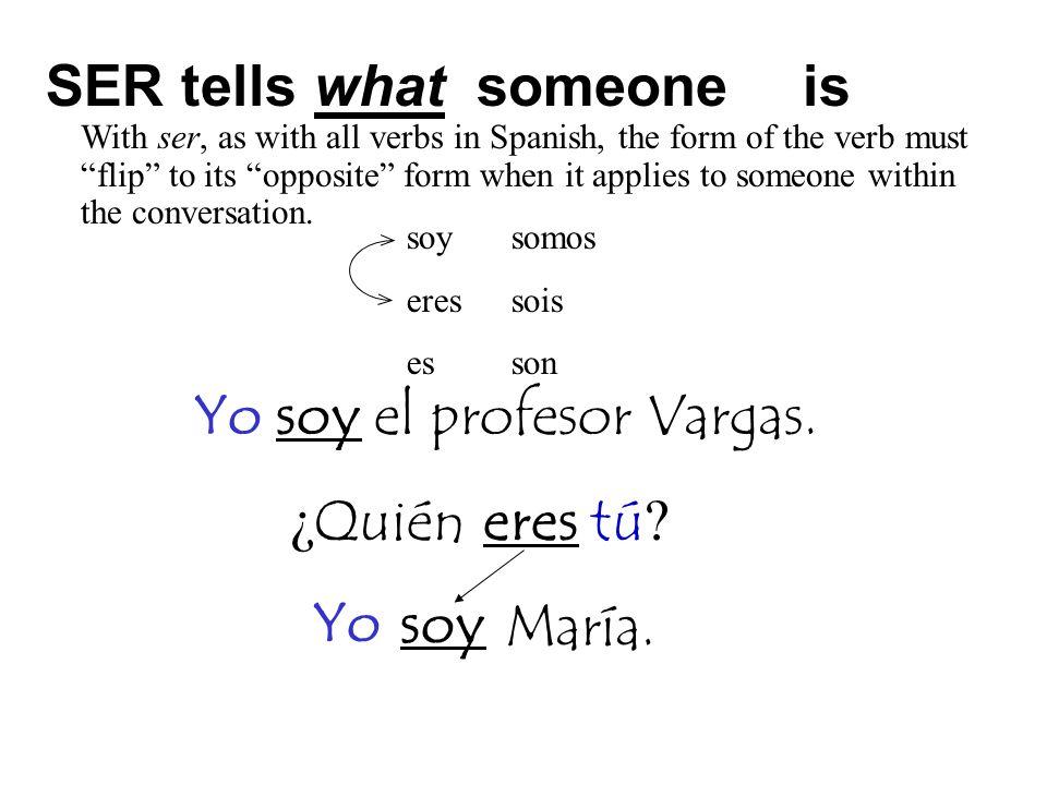 Yo soy el profesor Vargas.