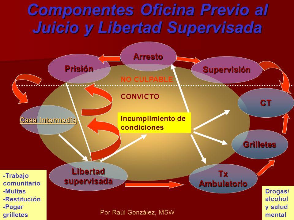 Componentes Oficina Previo al Juicio y Libertad Supervisada