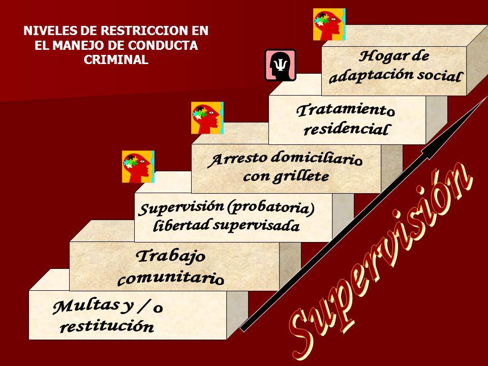 Supervisión (probatoria) libertad supervisada Supervisión