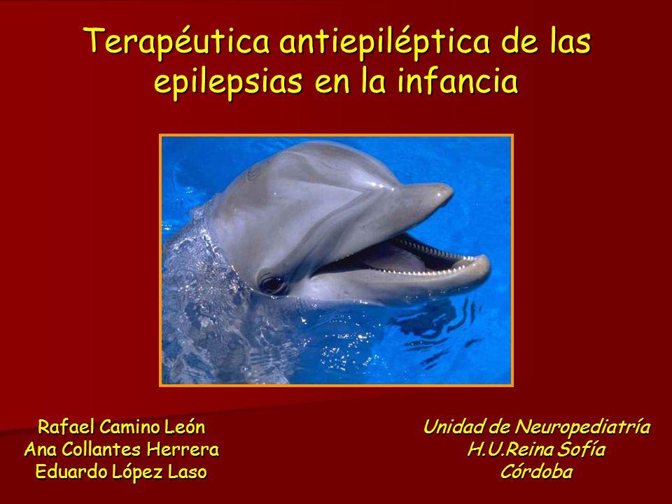 Terapéutica antiepiléptica de las epilepsias en la infancia