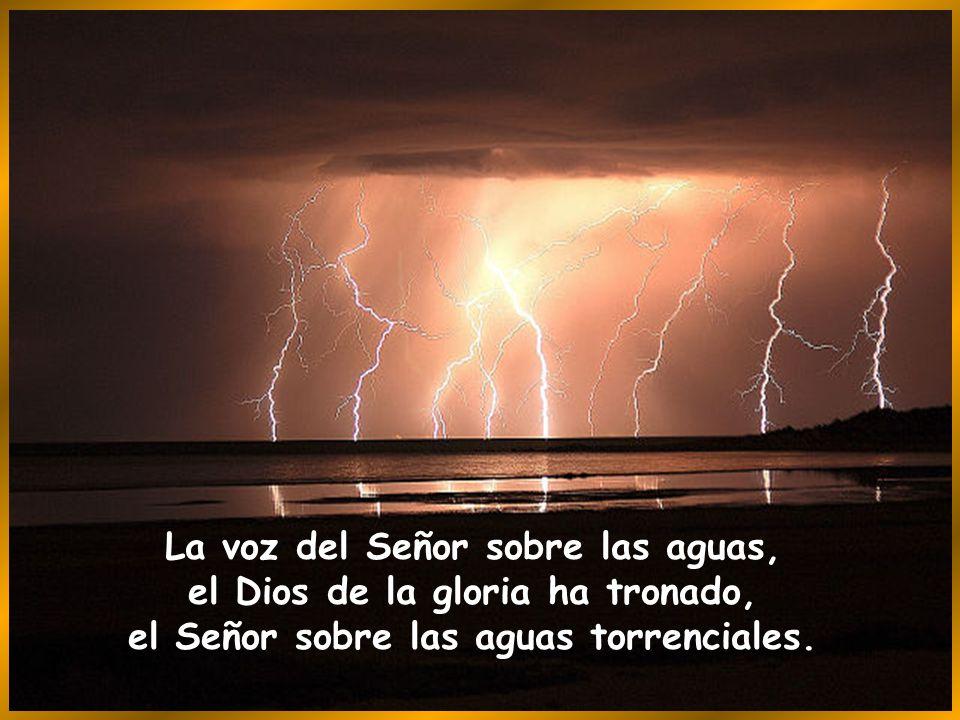 La voz del Señor sobre las aguas, el Dios de la gloria ha tronado, el Señor sobre las aguas torrenciales.