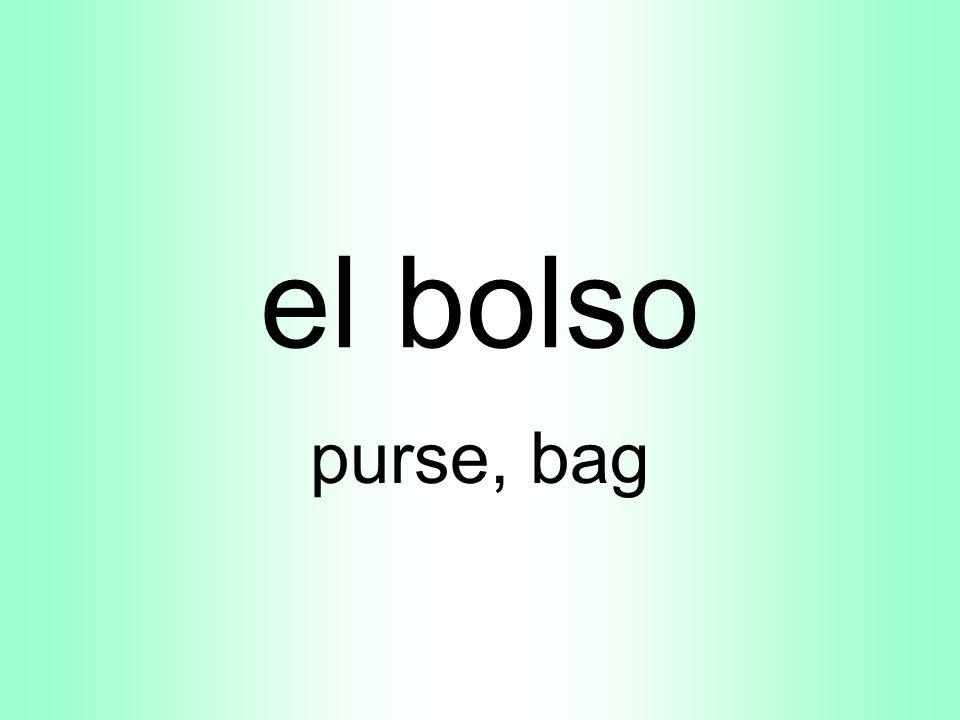 el bolso purse, bag